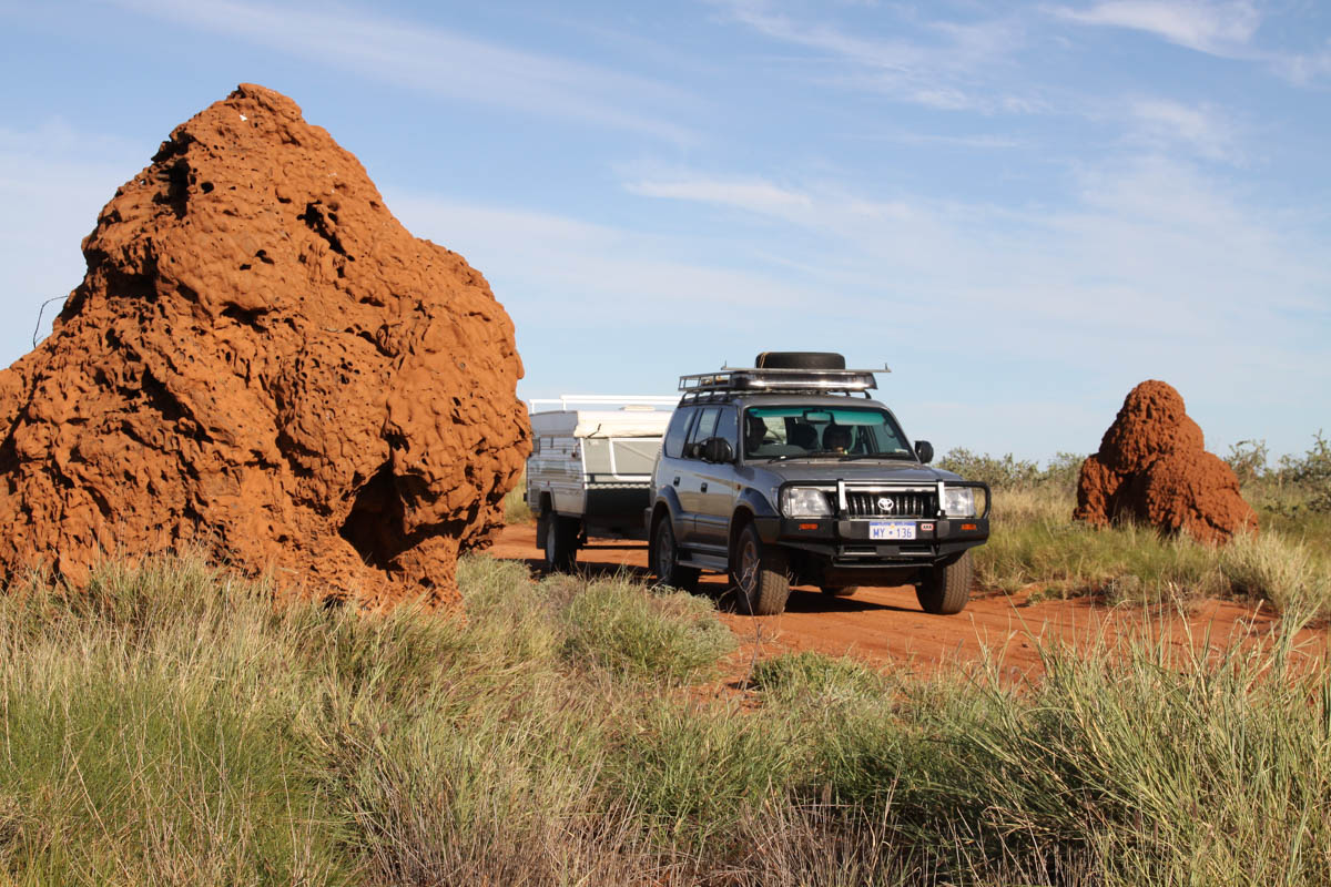 Amongst the spinifex termite mounds - near Onslow, WA (1)