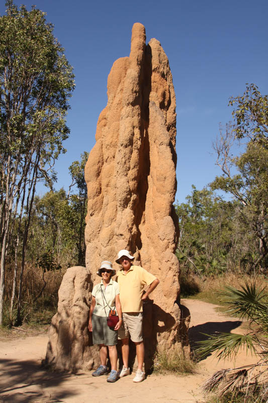 Cathedral termite mound - Litchfield National Park, NT (2)