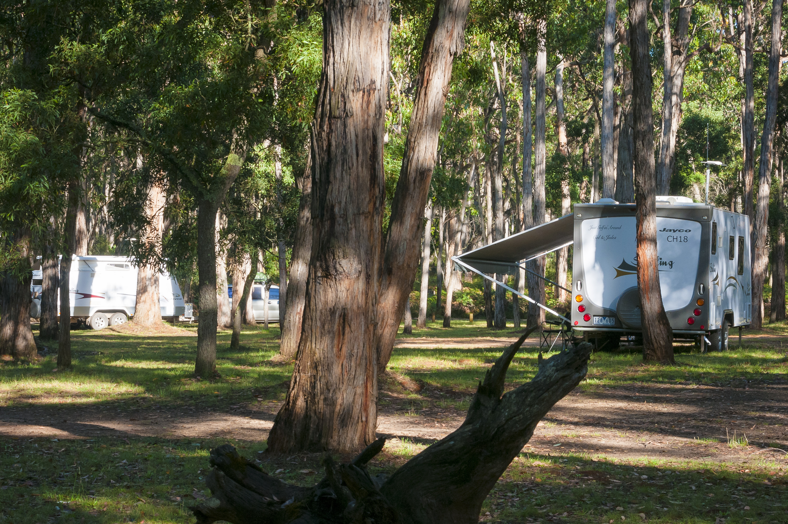 15-sawpit-campground-near-narrawong-is-a-popular-free-camp-15km-from-portland