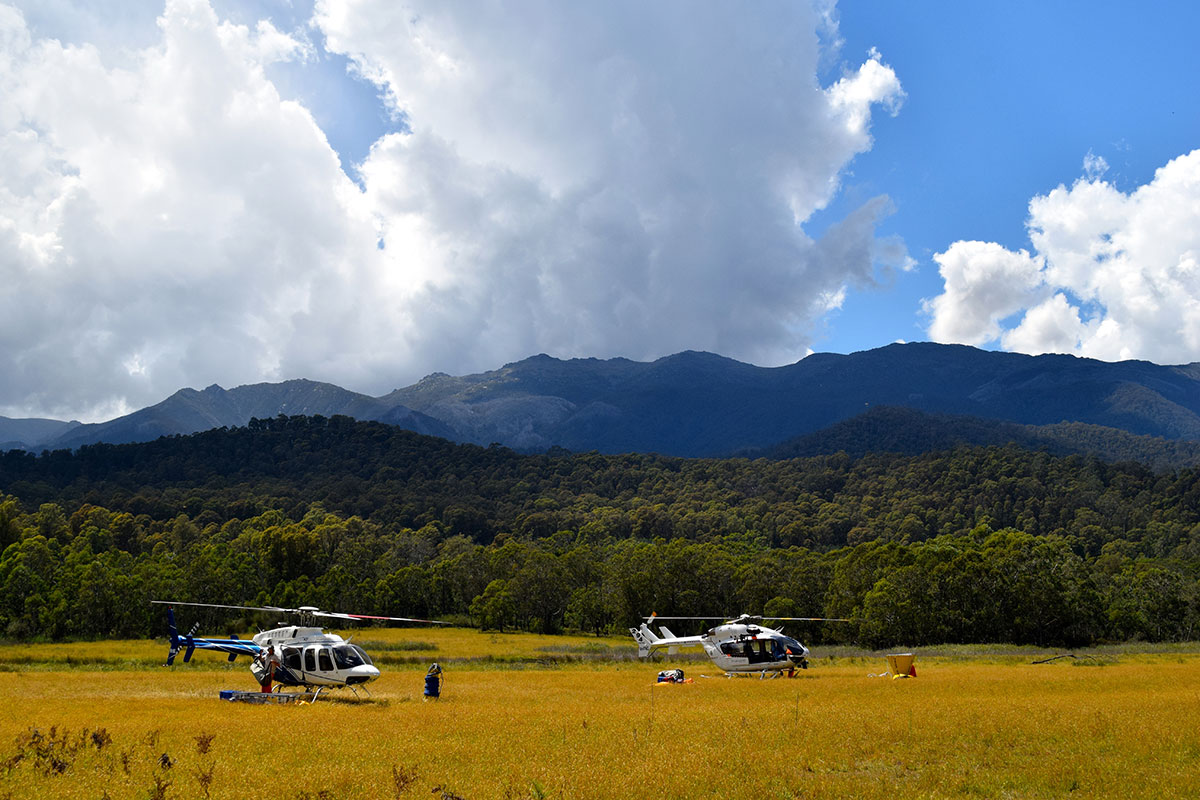 Helicopters parked at the base of mountains