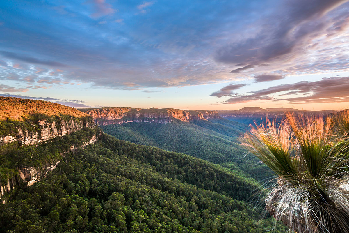 Blue-Mountains-National-Park-NSW-Australia
