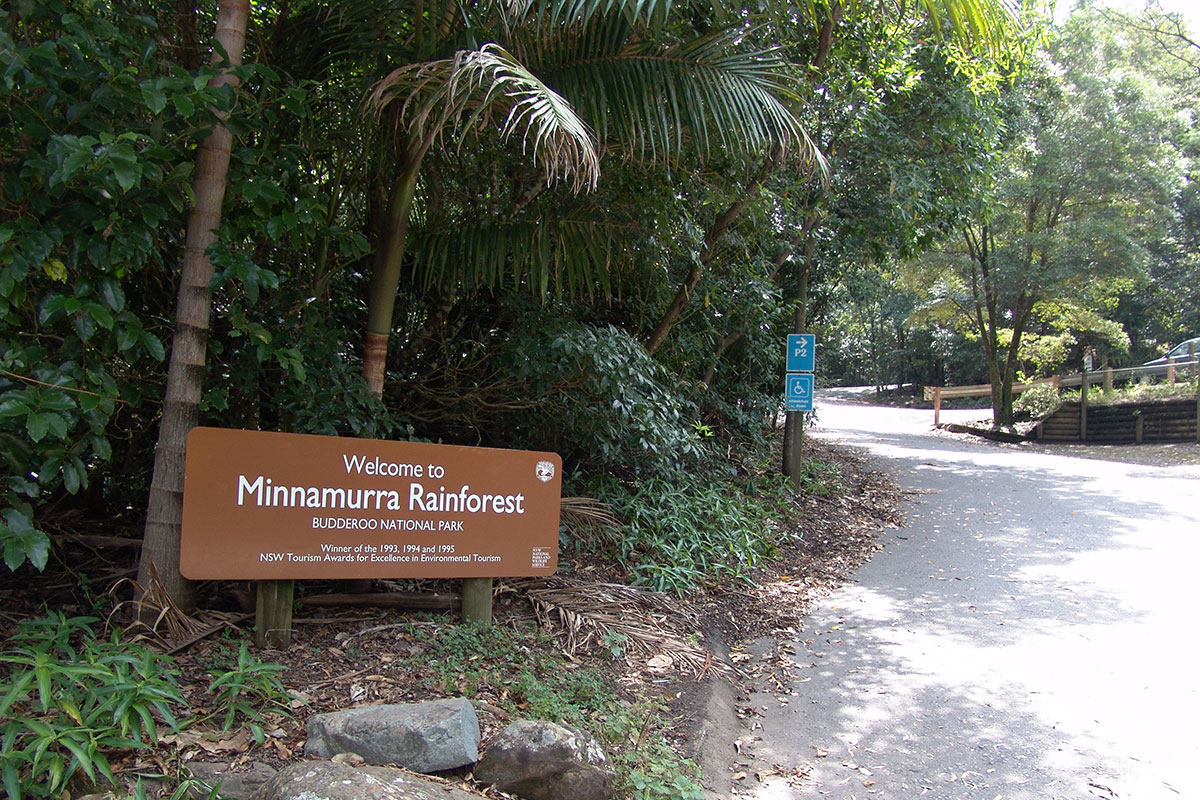 Minnamurra-Rainforest-Budderoo-National-Park-NSW-Australia