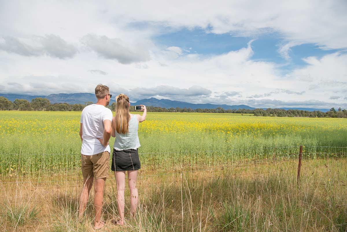 Couple-taking-photos-at-Lavender-Field
